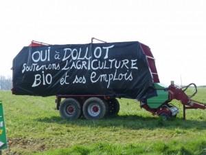 dollot_bio